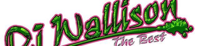 wallison