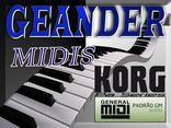 GEANDER MIDIS
