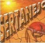 Sertanejo Gospel 2013