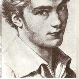 Imagem do artista Franz Schubert