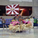 SAMBA SAMBA BAIXAR 2009 ENREDO IMPERADORES DO