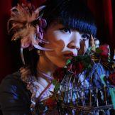 Imagem do artista Mika Kobayashi