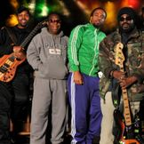 Imagem do artista The Wailers
