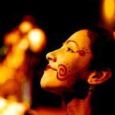 Imagem do artista O Teatro Mágico