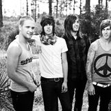 Imagem do artista Sleeping With Sirens