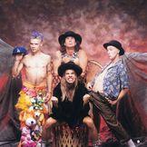 Imagem do artista Red Hot Chili Peppers