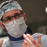 Imagen del artista Grey's Anatomy