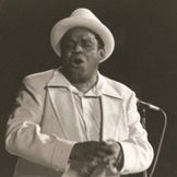 Imagem do artista Willie Dixon