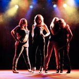 Imagem do artista The Donnas