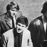 Imagem do artista Wayne Fontana & The Mindbenders