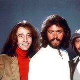 Imagen del artista Bee Gees