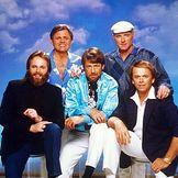 Imagem do artista The Beach Boys