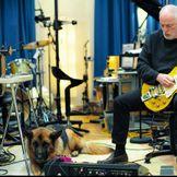 Imagem do artista David Gilmour
