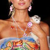 Imagem do artista Paris Hilton