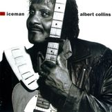 Imagem do artista Albert Collins