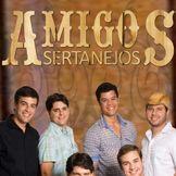 Imagem do artista Amigos Sertanejos