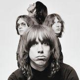 Imagem do artista The Stooges