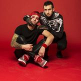 Imagem do artista twenty one pilots