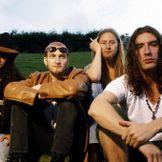 Imagen del artista Alice In Chains