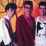 Imagen del artista The Smiths