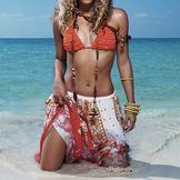 Imagen del artista Shakira
