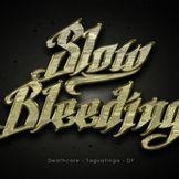 Imagem do artista Slow Bleeding
