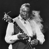 Imagem do artista Albert King