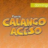 Imagem do artista Calango Aceso