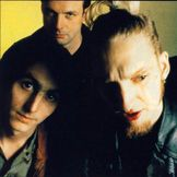 Imagem do artista Mad Season
