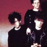 Imagem do artista The Jesus And Mary Chain