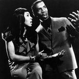 Imagen del artista Ike & Tina Turner