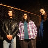 Imagen del artista Screaming Trees