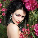 Imagem do artista Siouxsie And The Banshees
