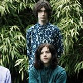 Imagem do artista The Wytches
