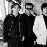 Imagem do artista The Stranglers