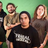 Imagem do artista Tribal Seeds