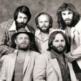 Imagem do artista The Beach Boys