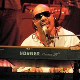 Imagem do artista Stevie Wonder