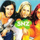 Imagem do artista SNZ