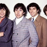 Imagem do artista The Troggs