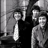 Imagem do artista The Tremeloes
