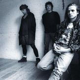 Imagen del artista Pearl Jam