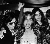 Foto de The Stooges