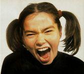 Foto de Björk