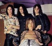 Photo of The Stooges