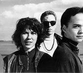 Photo of Pixies