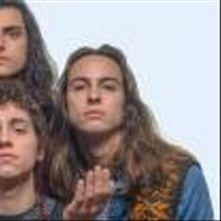 Foto do artista Greta Van Fleet