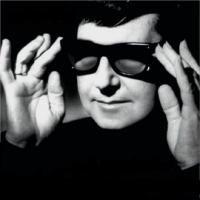 Foto do artista Roy Orbison