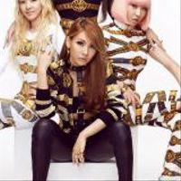 Foto del artista 2NE1