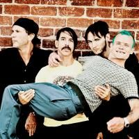 Foto del artista Red Hot Chili Peppers
